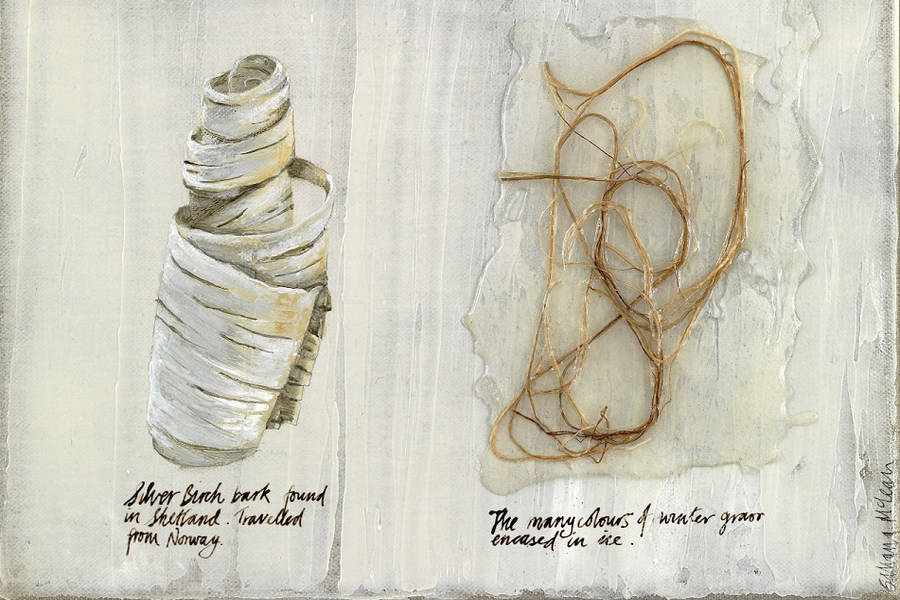 Silvana McLean, Diary of a Cold Spell (detail)