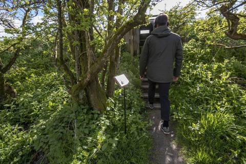 Sound walk, part of the 'Faileas' exhibition by Angela Alexander Lloyd. Photo by Colin Tennant